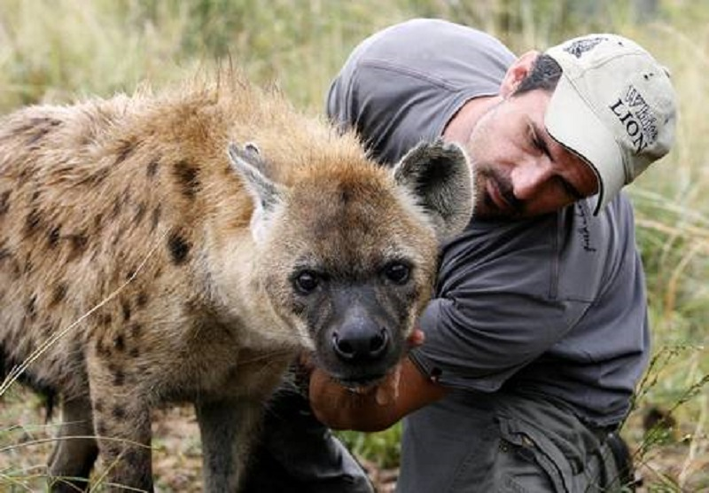 A man win a hyena